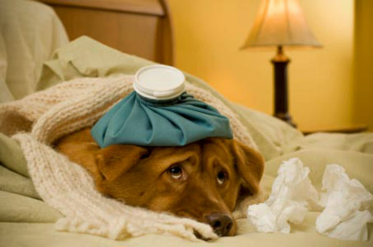 упражнения от головных болей