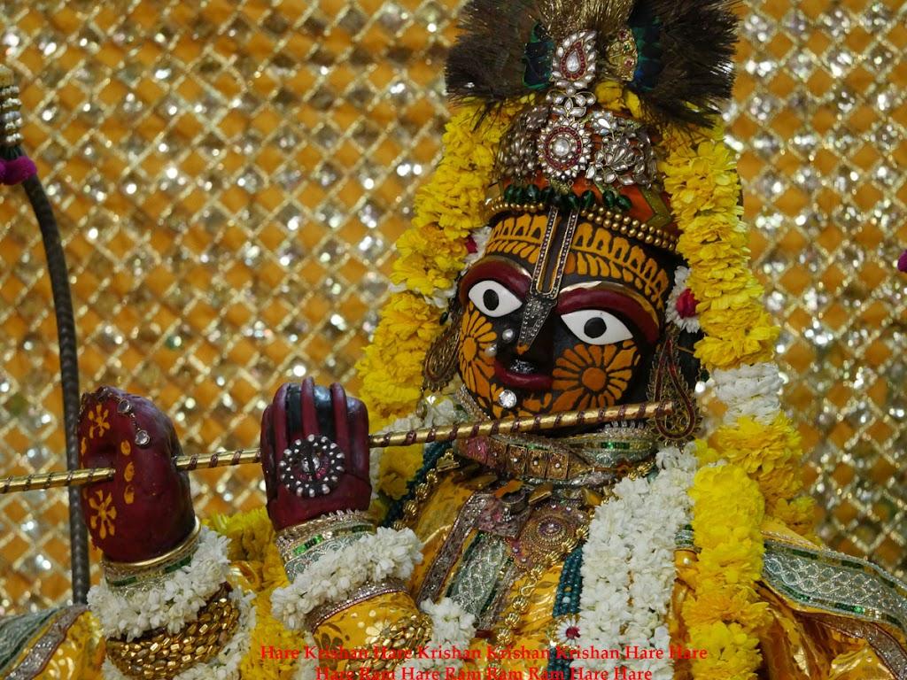 Radha Govind Devji Deity Darshan 2 April  2016  (2)