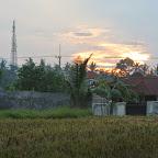 0414_Indonesien_Limberg.JPG