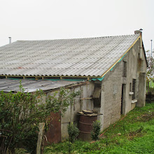 Delovna akcija Rečica, Ilirska Bistrica, 27., 28., 29., 30. 9. 2014 - IMG_0123.jpg