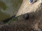 Fabi beim Schildkröten angeln