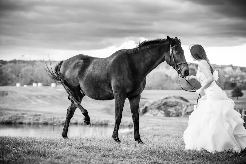 Emily and Tim - Blueflash Photography 015.jpg
