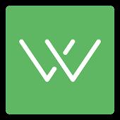 Wire Flow Wireframe Design