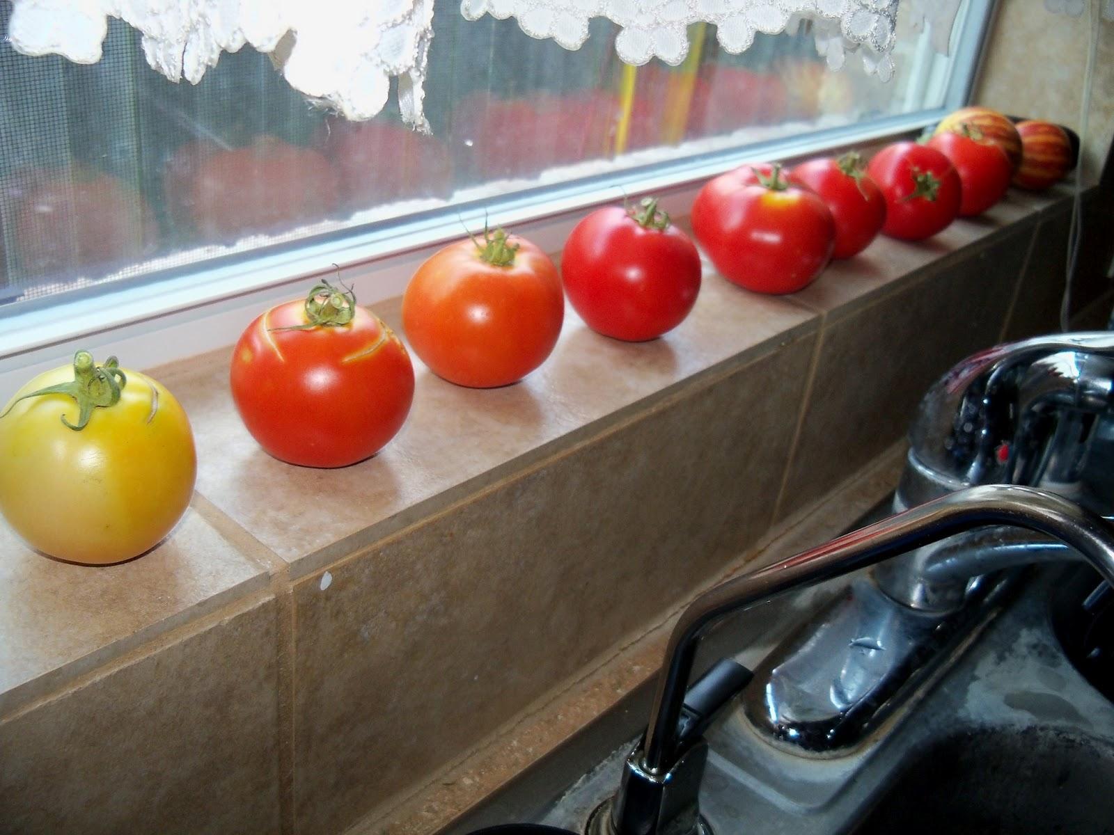 Gardening 2012 - 115_2763.JPG
