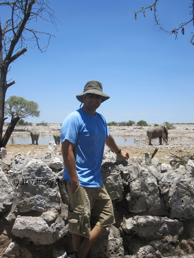 Etosha National Park. From Through the Eyes of an Educator: National Parks