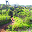 santiago-oaks-IMG_0454.jpg