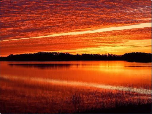 Nine Mile Pond at Sunrise, Everglades, Florida.jpg