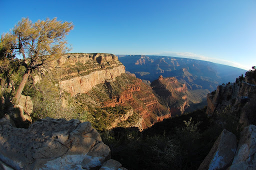 Morning on the south rim, 5/14/11