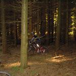 blandet 2008 Marts 052.jpg