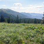 20170630_Carpathians_216.jpg