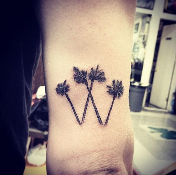 Estas palmeiras