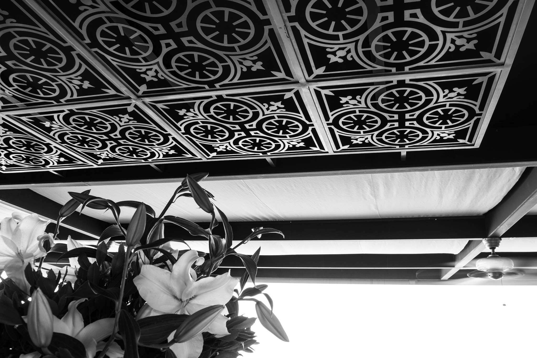 ceiling at georges hotel