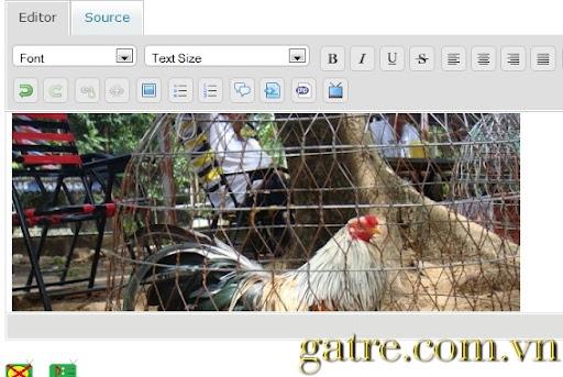 [Hình: Gatre.com.vn-uphinh8.jpg]