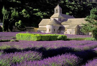 Gordes - Abbaye de Sénanque
