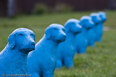 blue-dogs-3