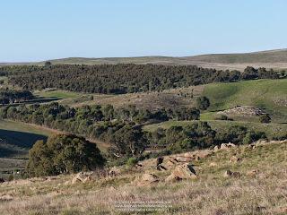 201104 Springton Eden Valley 31