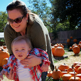 Pumpkin Patch - 115_8245.JPG