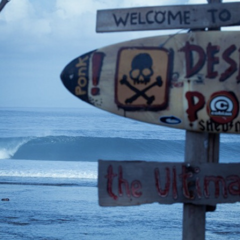 SURF, OLAS, MORTALES, DEAD, WAVES, DEATH