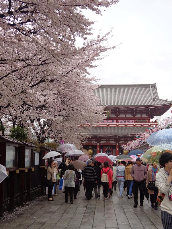 2014 Japan - Dag 5 - marjolein-DSC03533-0020.JPG