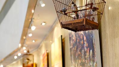 Beauiful singing birds at the corridor