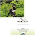 Terobosan Cafe Moringa Sajikan Menu Dari Tanaman Kelor