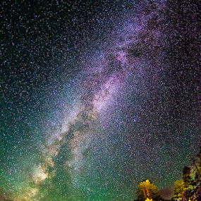 Bryce Canyon Milky Way by Joshua Meyer - Landscapes Starscapes ( bryce canyon, milky way )