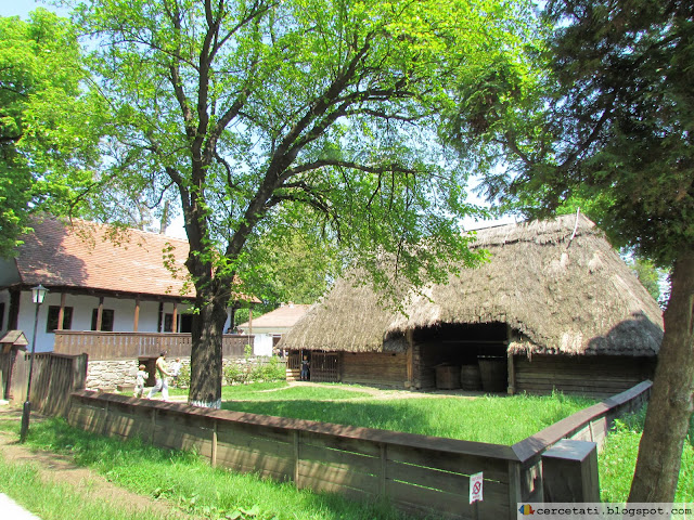 Dragus household, Brasov County