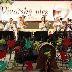 8. Vinařský ples