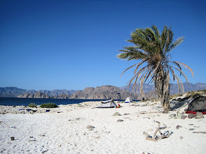 Photo: We stayed for two nights at this campsite at the southeastern tip of Carmen Island. It really  was beautiful with great views in all directions. But the two  palm trees supplied the only shade and we were often found near them as a result.