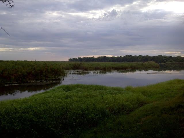 Our view during language week in Shakawe