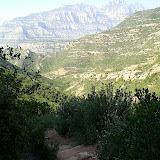 Sortida Sant Salvador de les espasses 2006 - CIMG8381.JPG
