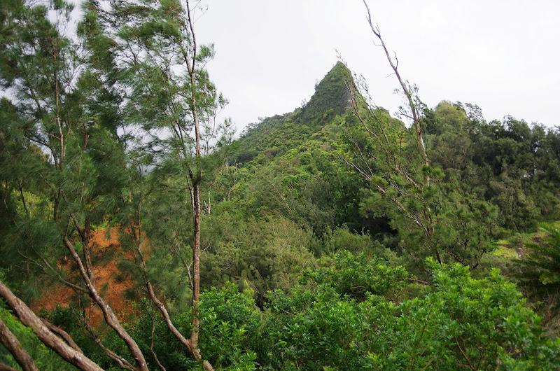 06-18-13 Waikiki, Coconut Island, Kaneohe Bay - IMGP6972.JPG