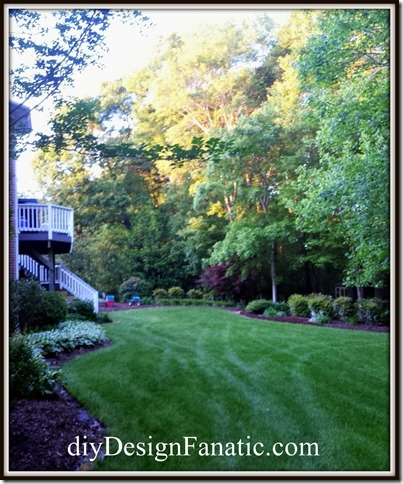 gardening, organic garden, landscape, diy landscape, backyard, beautiful garden, make gardening easier