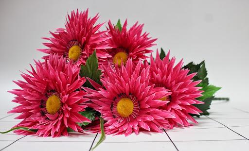 Мир цветов 76