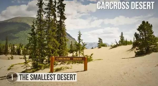 The Smallest Desert