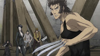 Wolverine (anime review)