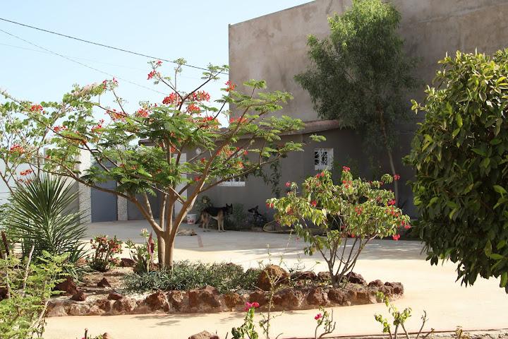 on s'eclate au .... Senegal IMG_1039