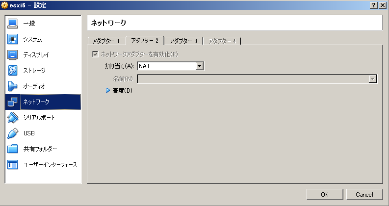 vms_on_esxi_with_internet_config_nat_adapter.png