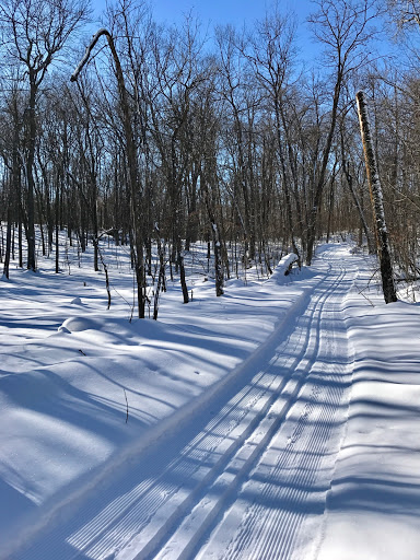 Low spot on Roy's Run. Always most snow on trail sytem here. Nearly two feet base