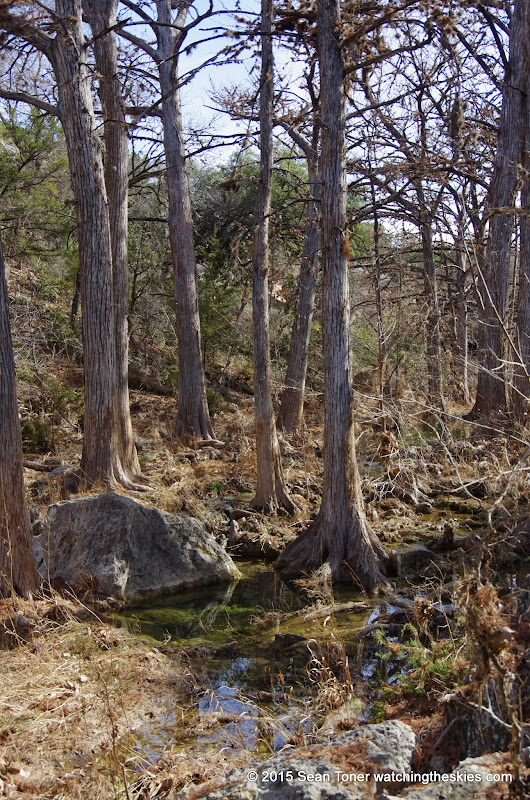 01-25-14 Texas Hill Country after an Ice Storm - IMGP1157.JPG