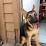 Susan Gehrs's profile photo