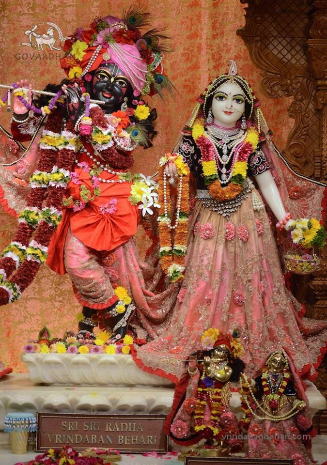 ISKCON GEV (Wada) Deity Darshan 26 Jan 2016  (12)