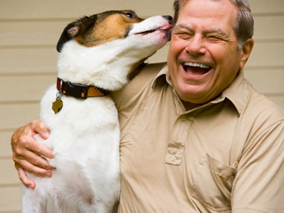 Fight Stress by Playing With Pets