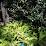 Shreya Neogi's profile photo