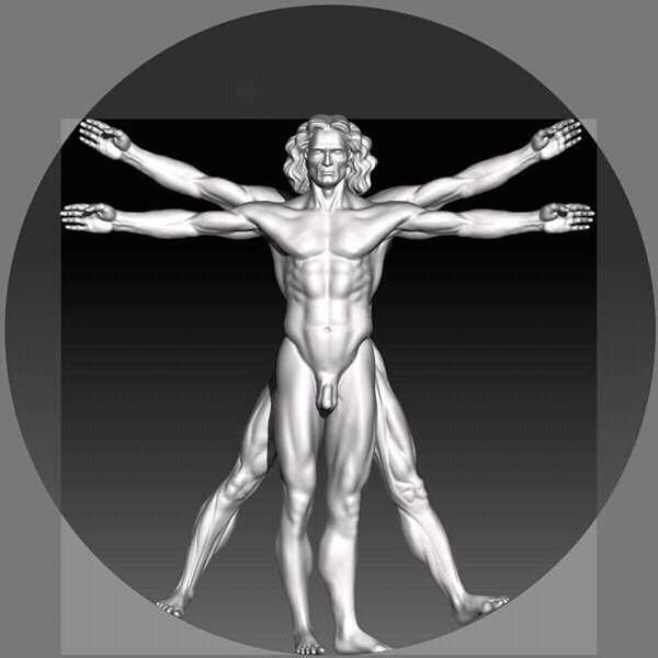Clases de Arte - El Blog: Clases de anatomía para artistas digitales