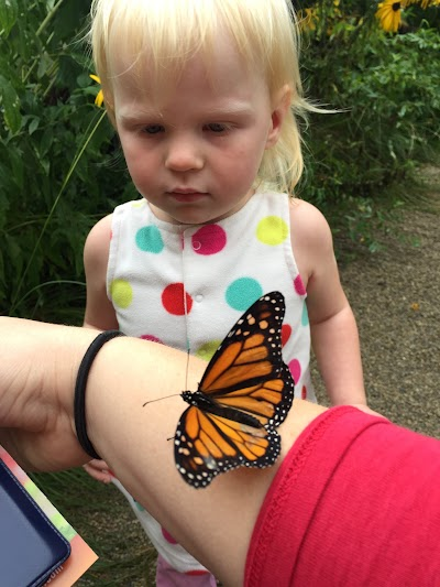 Appleton Butterfly Garden