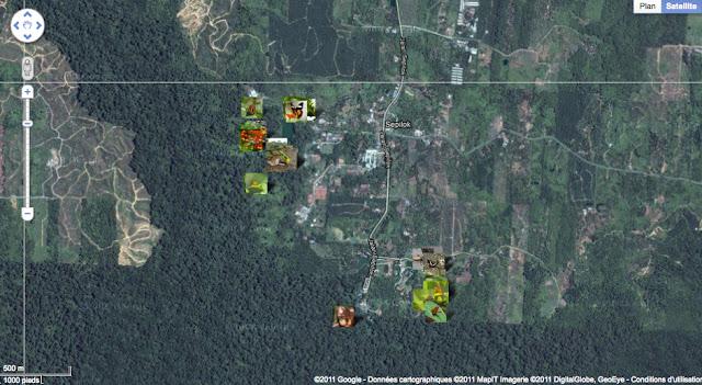 Localisation des photos autour de Sepilok (près de Sandakan)