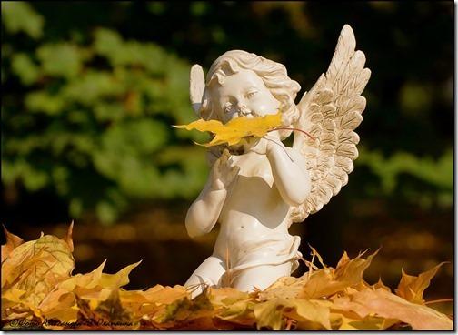 otoño angel 4