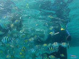 pulau harapan, 6-7 juni 2015 samsung gopro be 16