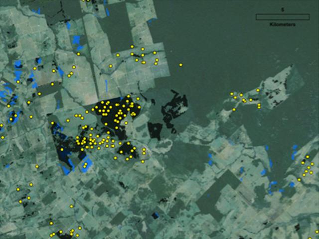 A satellite image of the Brazilian state of Mato Grosso. Blue regions indicate deforestation tracked by the PRODES system. Black boxes and yellow dots mark additional deforestation that was not tracked. Graphic: VanWey Lab / Brown University